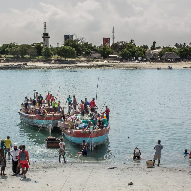 """Dar es Salaam - Fishing Boats landing catch."" stock image"