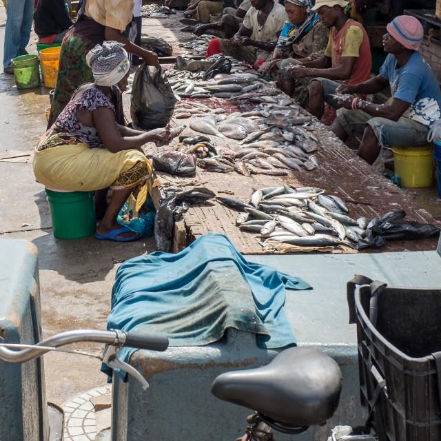 """Dar es Salaam Fish Market 1 - Descaling Fish"" stock image"