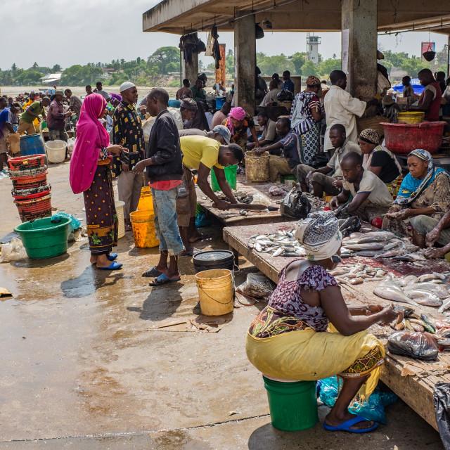 """Dar es Salaam Fish Market 3 - Descaling Fish"" stock image"