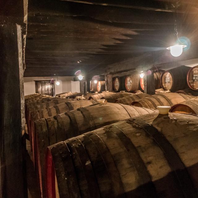 """Blandy's Wine Lodge casks"" stock image"