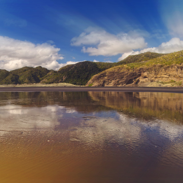 """""""Landscape view of the Castlepoint beach, NZ"""" stock image"""