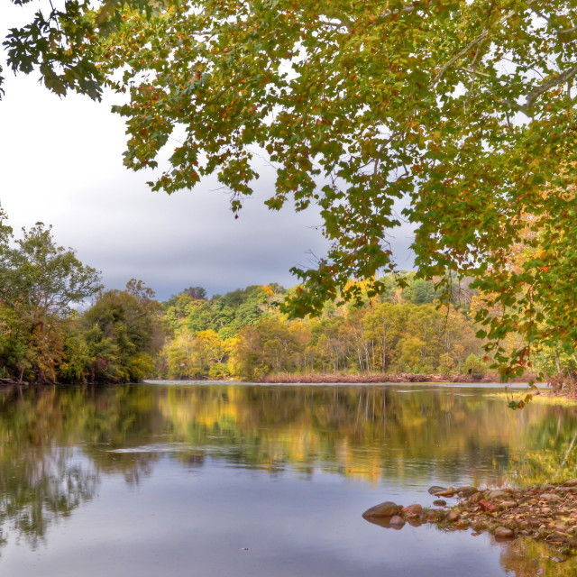 """Autumn On The New River"" stock image"