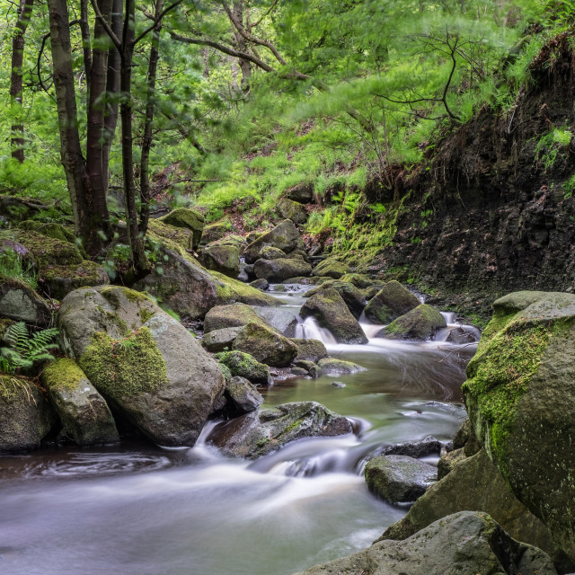 """Burbage Brook, Padley Gorge"" stock image"
