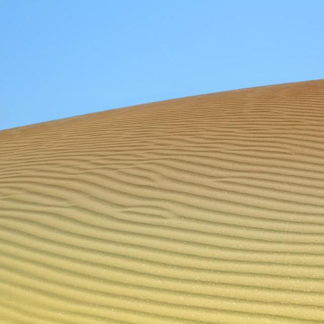 """""""sand dune desert landscape"""" stock image"""