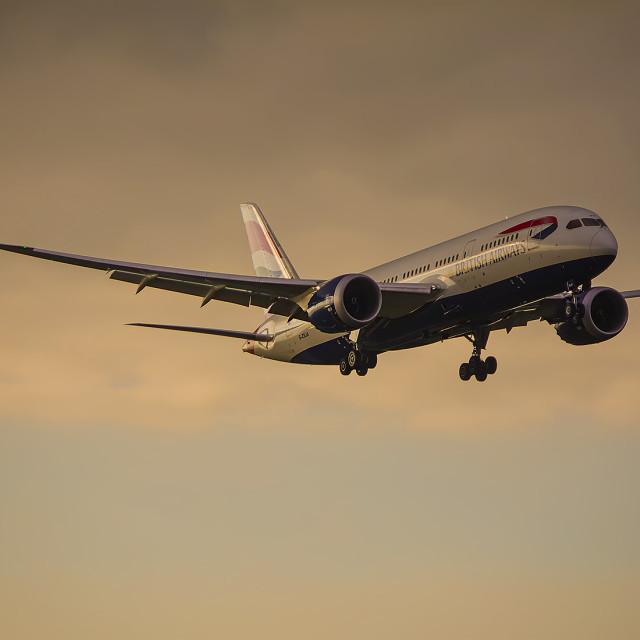 """""""British Airways B787"""" stock image"""