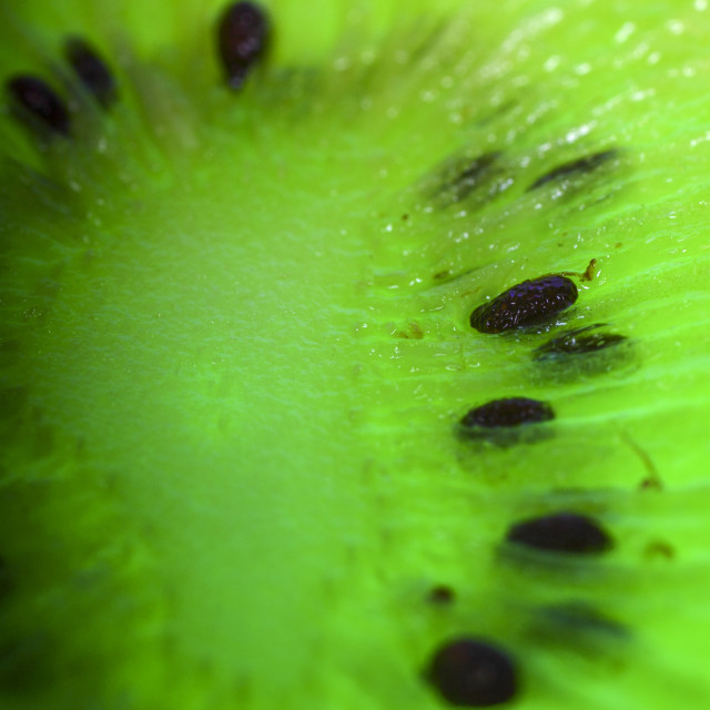 """Macro kiwi fruit"" stock image"