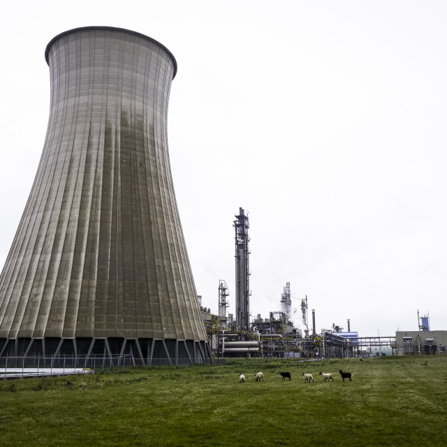 """""""Cooling tower at chemical factory"""" stock image"""