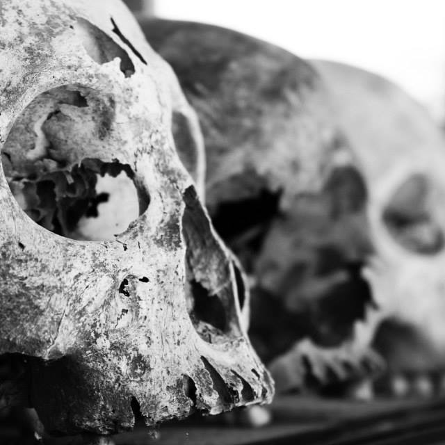 """Skulls at the killing fields"" stock image"