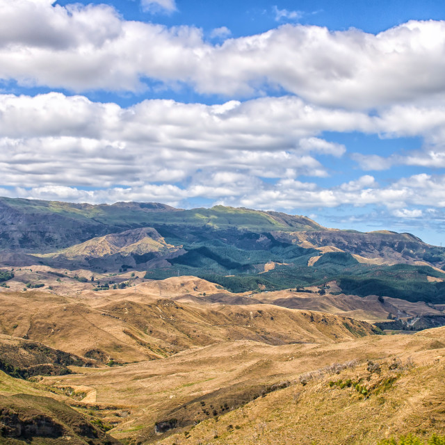 """""""Landscape in New Zealand"""" stock image"""