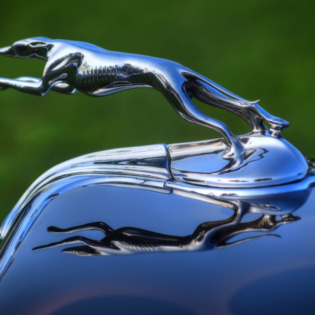 """Ford Hood Ornament"" stock image"
