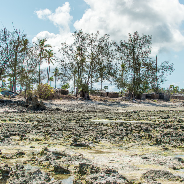 """Coastal Village in Mozambique 2"" stock image"