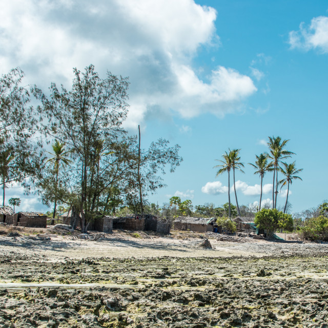 """Coastal Village in Mozambique 4"" stock image"