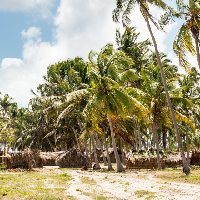 """Coastal Village in Mozambique 6"" stock image"