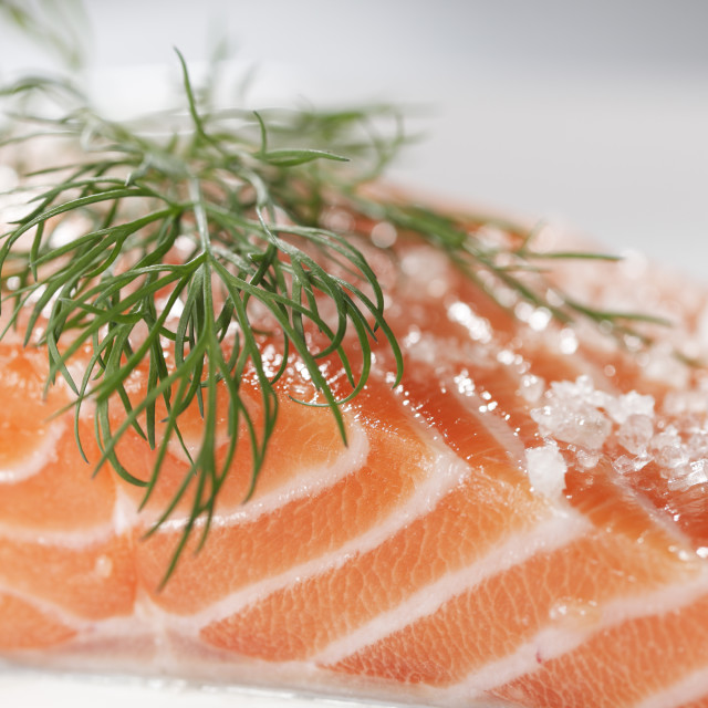 """Salmon"" stock image"