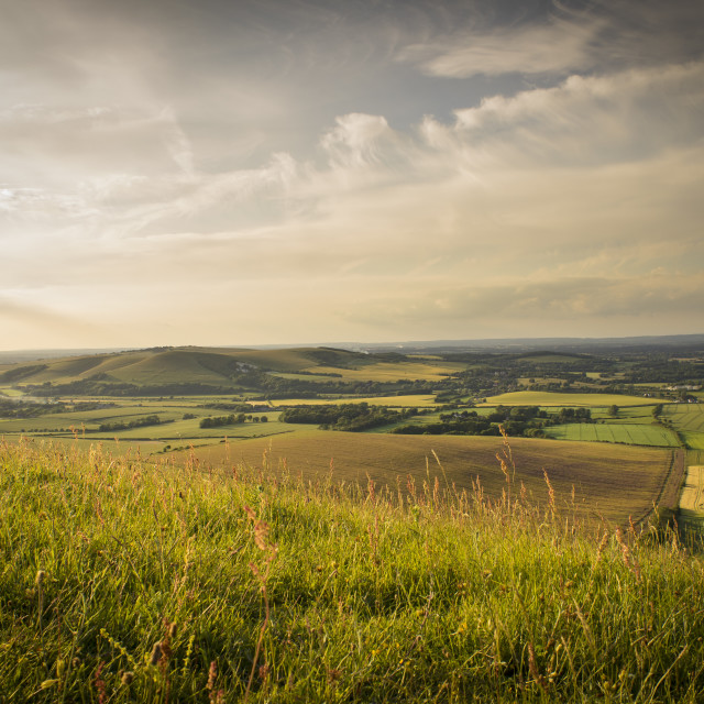 """""""South Downs"""" stock image"""