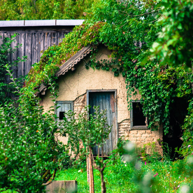 """Abandoned Cottage"" stock image"