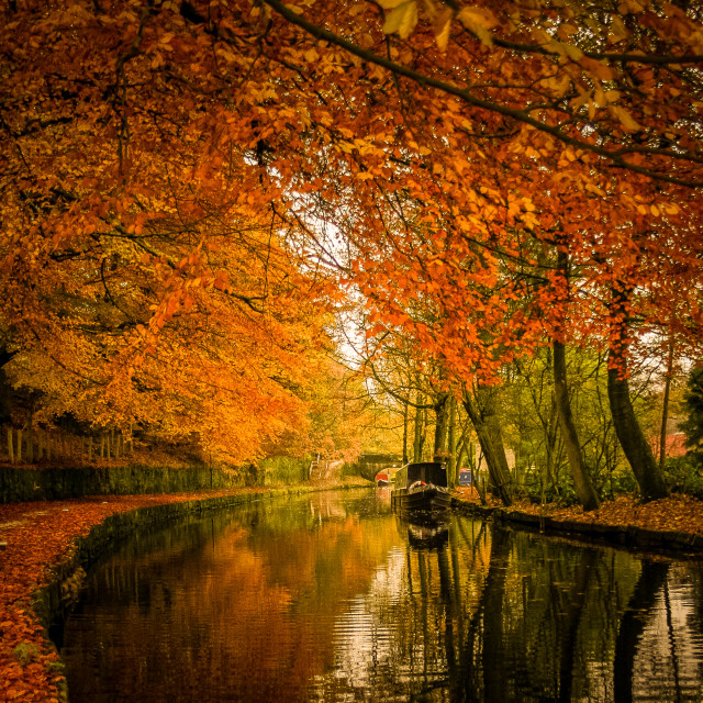 """The Canal in autumn."" stock image"
