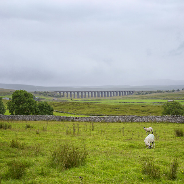 """Yorkshire Dales with the Ribblehead viaduct"" stock image"