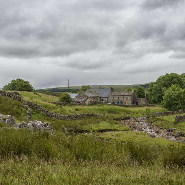 """""""Farm in the Yorkshire Dales"""" stock image"""