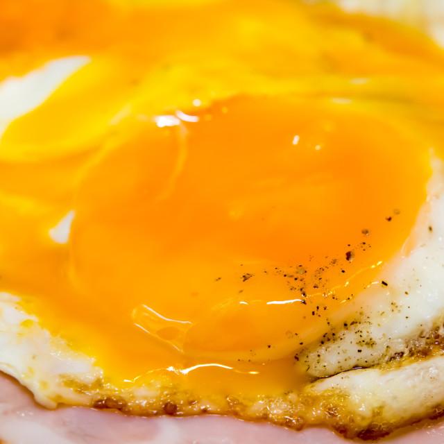 """Tasty egg with ham"" stock image"