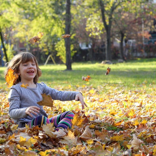 """happy little girl throws autumn leaves"" stock image"