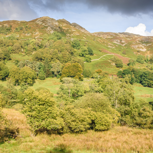 """""""Autumn Colours in the Lake District"""" stock image"""