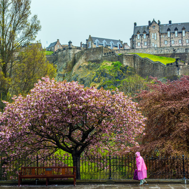 """Edinburgh walk"" stock image"