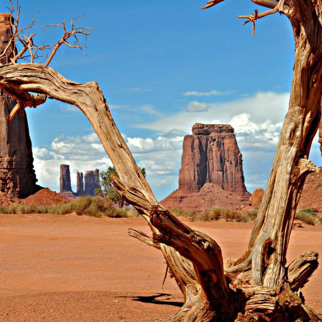 """""""Monument Valley Arizona"""" stock image"""