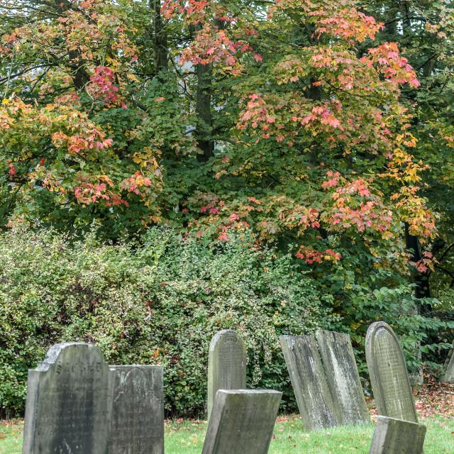 """""""Eyam Autumn Graveyard"""" stock image"""