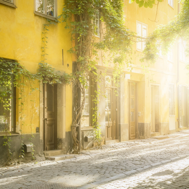 """old street in Stockholm"" stock image"