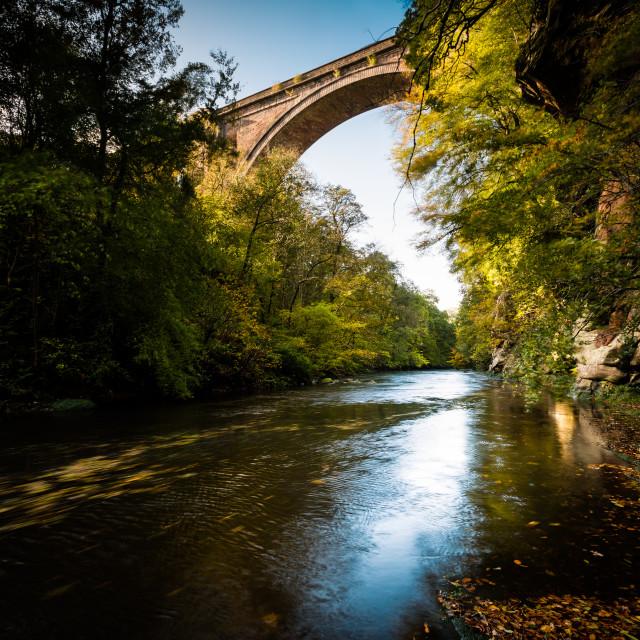 """""""Ballochmyle Railway Viaduct in Autumn"""" stock image"""