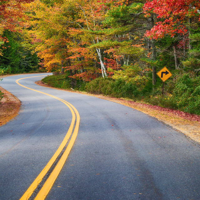 """""""Winding road through autumn trees in New England"""" stock image"""