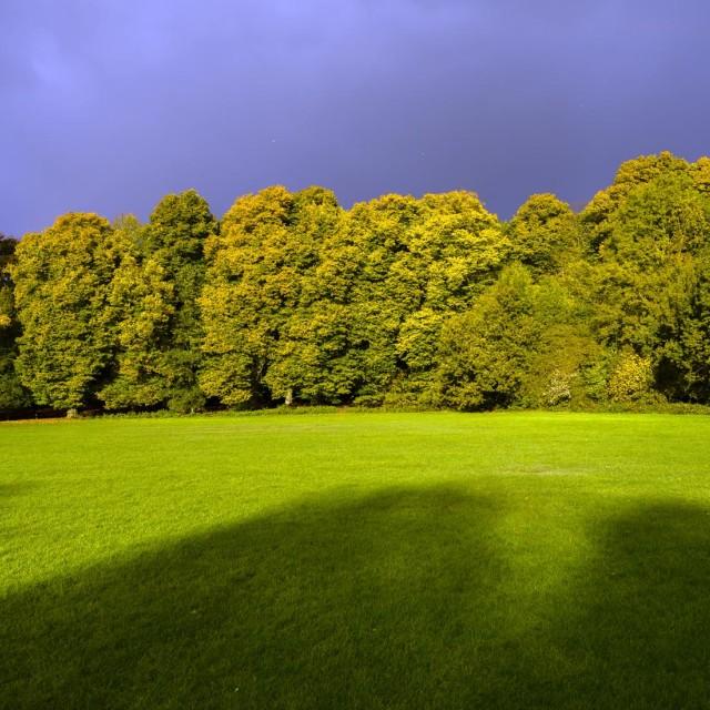 """England's Hampstead Heath"" stock image"