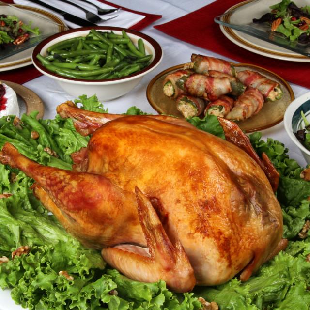 """Turkey Dinner"" stock image"