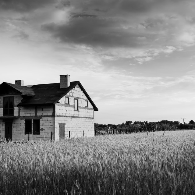 """Undone disused house in field"" stock image"