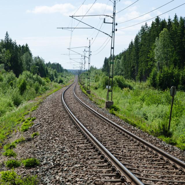 """Vanishing railway tracks"" stock image"