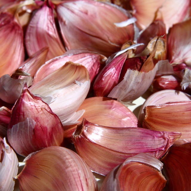 """Garlic cloves"" stock image"