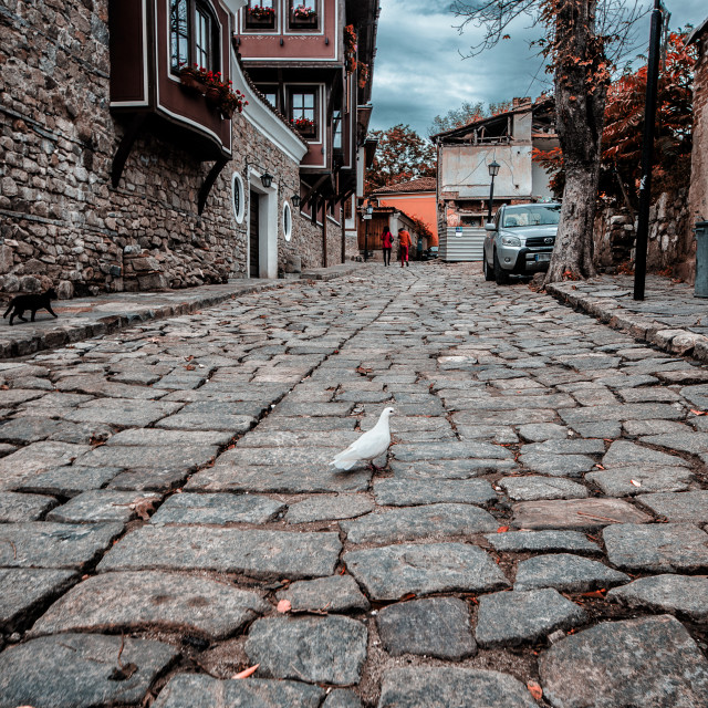 """The streets of Old Plovdiv"" stock image"