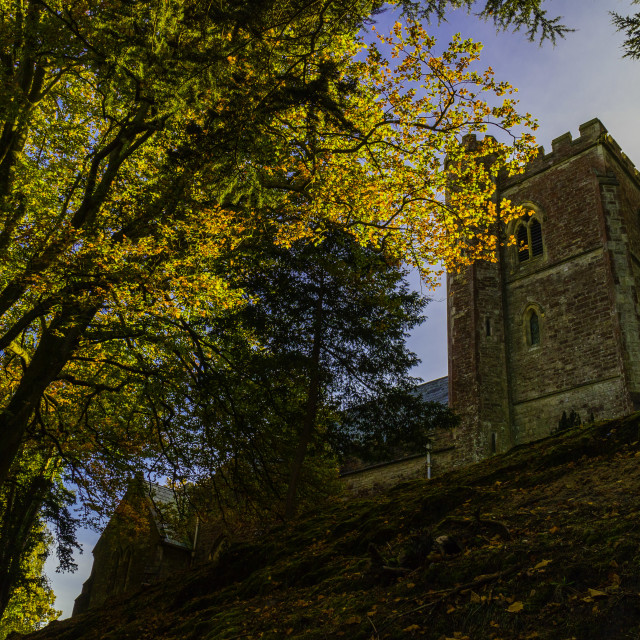 """""""Autumn Colours - St Mary's, Brownsea."""" stock image"""