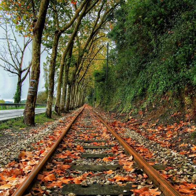 """""""Autumn Train"""" stock image"""