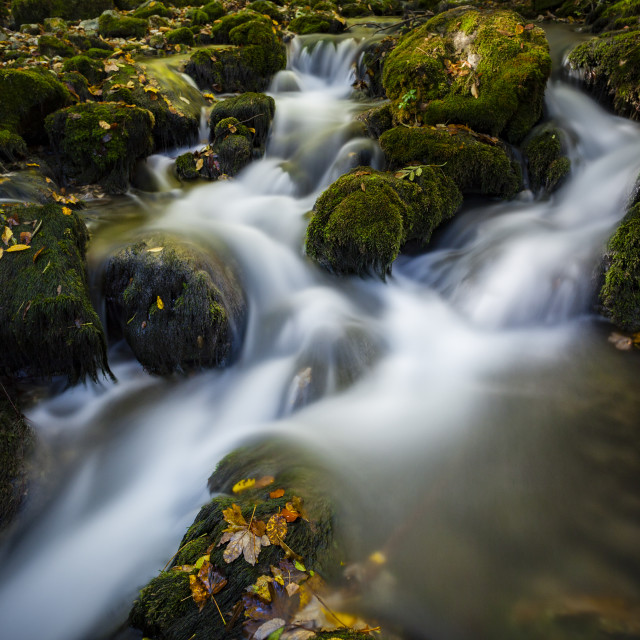 """Mountain stream in Romania"" stock image"