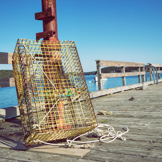 """Lobster traps at a fishing pier in New England"" stock image"