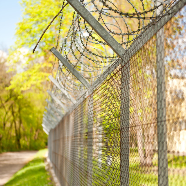 """Barbed wire on metal fence"" stock image"
