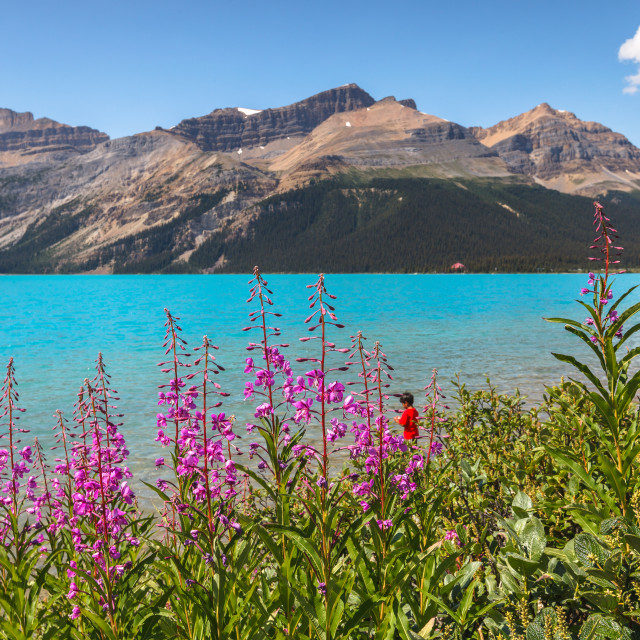 """Blue Bow Lake"" stock image"