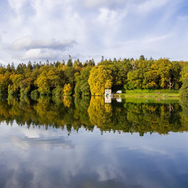 """""""Autumn sunshine at Shearwater Lake, Crockerton, Wiltshire"""" stock image"""