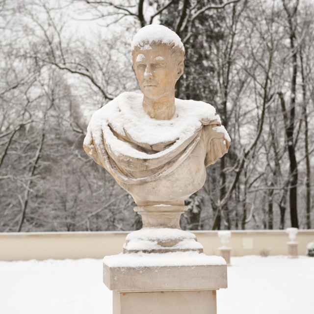 """""""Bust of man in Old Orangery"""" stock image"""