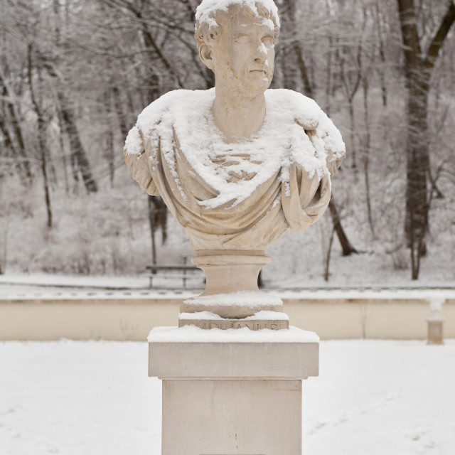 """""""Man bust in Old Orangery"""" stock image"""