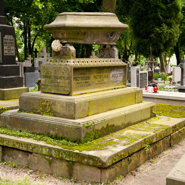 """Coffin monument on old grave"" stock image"
