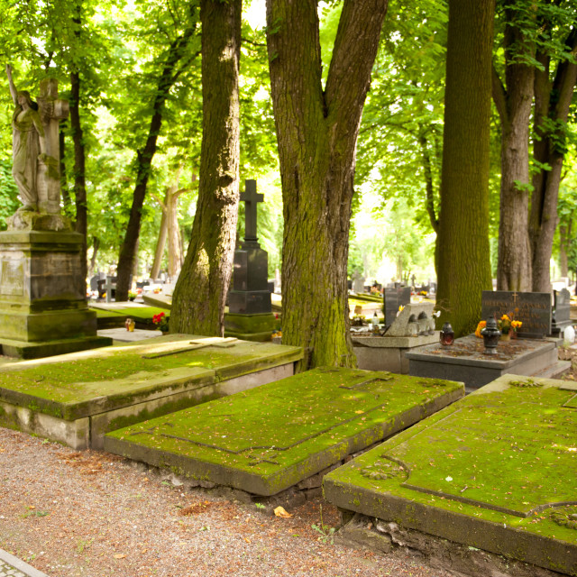 """Old flat graves slabs with moss"" stock image"