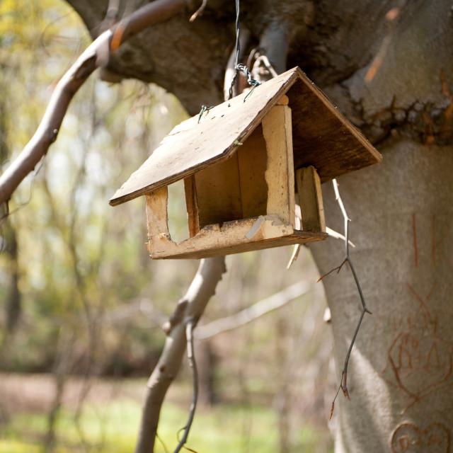 """Empty bird feeder hanging"" stock image"